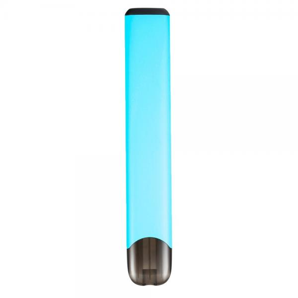 Fast Delivery Russia Colorful E Cig Battery Vape Mod Disposable Vape Pen Stick 300 Puffs